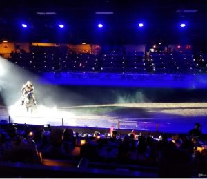 Medieval times with dinner with the family and the little dragon