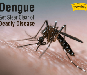 Types of dengue and how to avoid this deadly disease