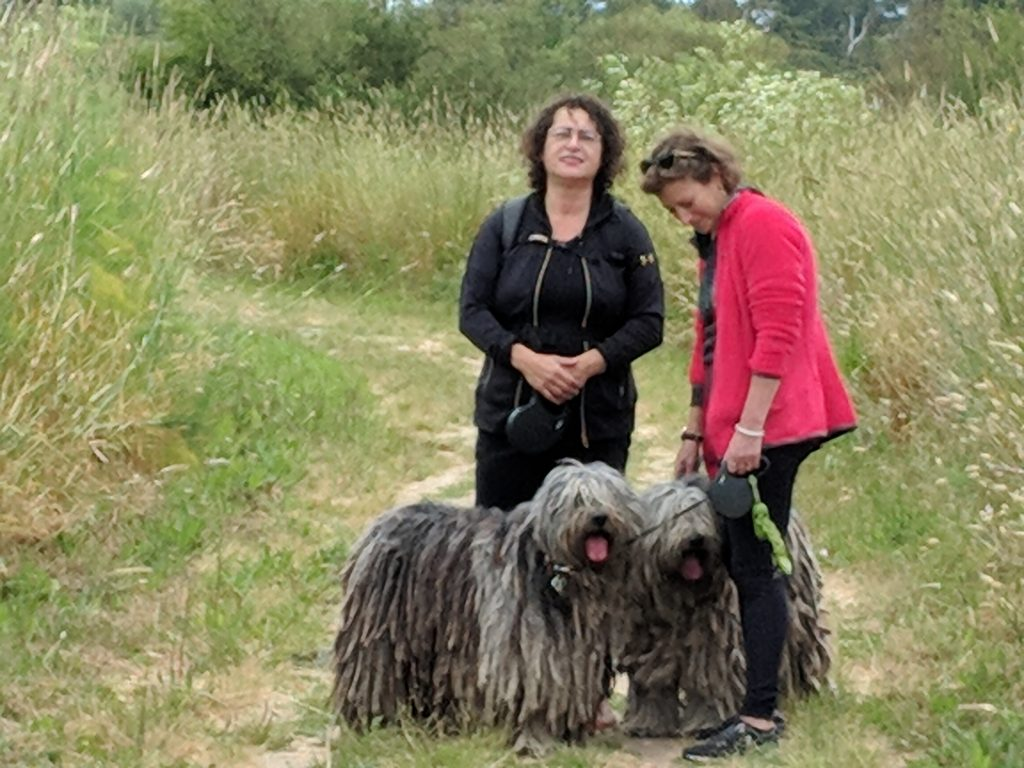 """Walking dogs with good friends is good for your health. """"class ="""" wp-image-33061 """"width ="""" 344 """"height ="""" 258 """"srcset ="""" https://www.drbaileyskincare.com/info/wp-content/uploads/Walk-with-Susan-and-Mindy -1-1024x768.jpg 1024w, https://www.drbaileyskincare.com/info/wp-content/uploads/Walk-with-Susan-and-Mindy-1-150x113.jpg 150 W, https: // www. drbaileyskincare .com / info / wp-content / uploads / Walk-with-Susan-and-Mindy-1-240x180.jpg 240w, https://www.drbaileyskincare.com/info/wp-content/uploads/Walk-with - Susan-and-Mindy-1-768x576.jpg 768 W """"dimensions ="""" (max. Width: 344 pixels) 100 W, 344 pixels"""