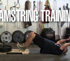 Low Tech Hamstring Training – RossTraining.com